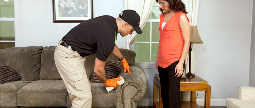 Highland, MI carpet upholstery cleaning