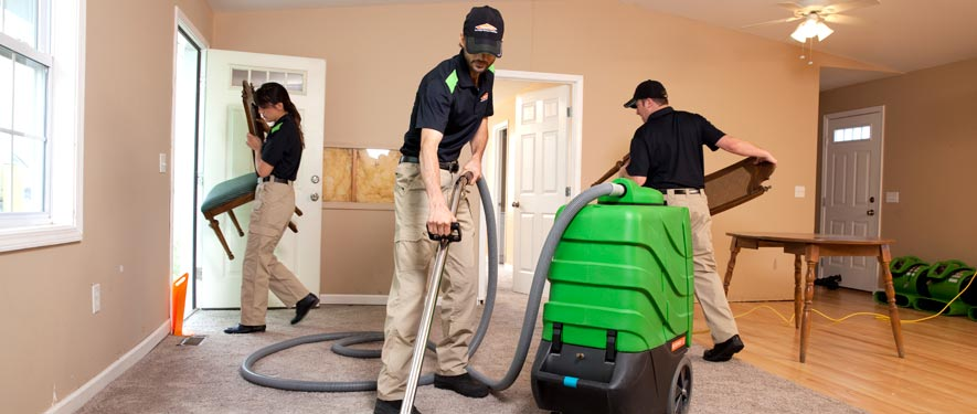Highland, MI cleaning services